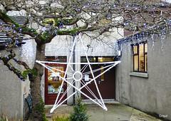 Kirkness & Gorie's Xmas Star (orquil) Tags: street xmas uk greatbritain winter shop festive lights star islands scotland orkney december christmasdecorations fancy broad kirkwall delicatessen cheeseandwine kirknessgorie
