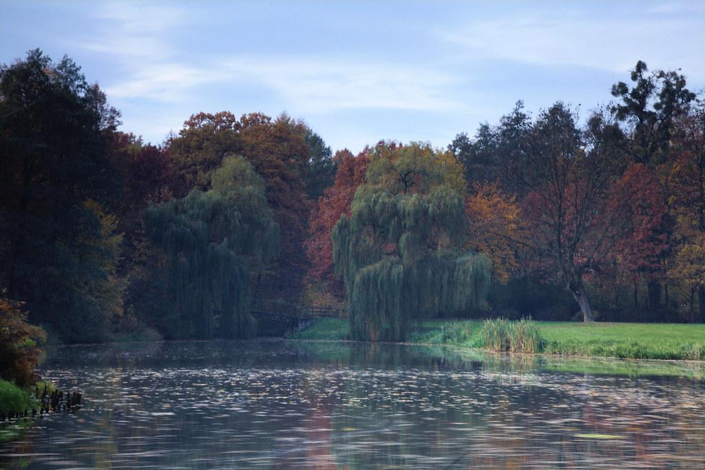 Autumn Ballet Adrianazphoto Tags Park Fall Silesia Slask Pszczyna Schlesien