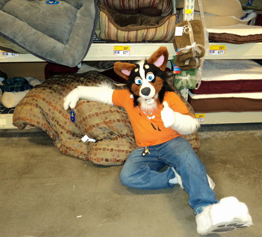 The World's Best Photos of fursuit and petsmart - Flickr