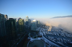 DSC_0616 (Chairman Ting) Tags: mist vancouver marina morninglight coalharbour morningmist vancouvermorning westcoastlife ilovevancouver foggymarina