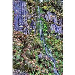 Roadside waterfalls 0n Bald Mountain (Tina Stadeli) Tags: water waterfalls roadside creeks baldmountain rainwater