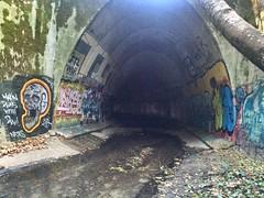 Finding gems #natas #timer #riase #war1 #ftl #santacruzgraffiti #tunnels #graff (seanmacmammoth) Tags: graff tunnels timer ftl natas war1 riase santacruzgraffiti