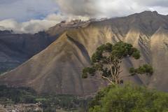 Andes and Town of Urubamba Sacred Valley - Peru (Don Thoreby) Tags: peru highlands valley sacred andes farms agriculture urubambariver urubamba urubambavalley urubambacity