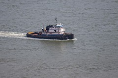 7K8A9241 (rpealit) Tags: scenery wildlife nature state line lookout tug boat mister t barge hudson river