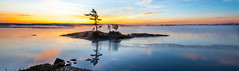 Sunrise On The Androscoggin (Me in ME) Tags: maine sunrise topsham panorama androscoggin river islet seasmoke surfacefog panoramam