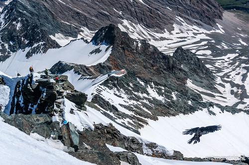 160707-08975-Alpy-Grossglockner-szczyt
