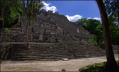 Calakmul (ireninakmer) Tags: calakmul campeche messico mexico rovine ruins maya giungla jungle