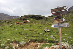 Wegweiser am Lago Lungo (uwelino) Tags: italien italy sdtirol altoadige alps alpen ultental meran 2016 wandern tirol ulten falschauer lana wegweiser