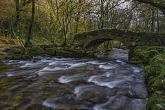 Hisley Bridge 3 (jonsomersphotos) Tags: hisleybridge hisleywoods river riverbovey packhorsebridge stonebridge bridge devon