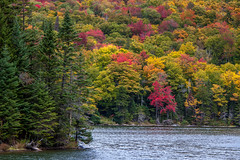 Coos County Road Trip (blackseal35) Tags: 2016 24105l canon canonti1 cooscounty dixvillenotch errol fall nh newhampshire northwoods whitemountains c color colorful colors leafpeeping leaves mountains river roadtrip stream view water woods