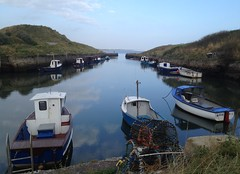 Seaton Sluice Harbour (Seaton Valley CC) Tags: harbour seatonsluice seatonvalley northumberland