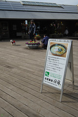 20161204-DS7_6458.jpg (d3_plus) Tags:  a05 wideangle d700 thesedays  architecturalstructure    kanagawapref    food lunch sky park autumnfoliage  japan   autumn superwideangle dailyphoto nikon tamronspaf1735mmf284dild  street daily  architectural  fall tamronspaf1735mmf284dildaspherical touring streetphoto  nikond700 tamronspaf1735mmf284 scenery building nature   tamron1735   tamronspaf1735mmf284dildasphericalif   autumnleaves