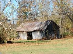 Old Barns (robgividenonyx) Tags: kentucky bullittcounty barns abandoned fall