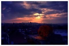 sunset of november (aminekaytoni) Tags: sunset sunrise november october autumn nuit coucher de soleit novembre canon clouds cloudy nature arts voyage rais trip world awesome sky ciel aarschot leuven belgium vlanderen 1885mm canon50d canon1885mm 17mm f9
