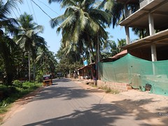 Villages Near Calicut Kerala Photography By CHINMAYA M (6)