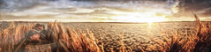 Duck Hunting Panorama (D-TaiL) Tags: duck hunting sun sunrise soleil nature stlaurent sky landscape panorama nikon d7000 dtailvision iphone6