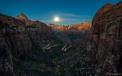 Zion Overlook Snake (Wim Air) Tags: