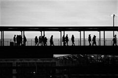 Silhouettes in the sunset (Mersa Photography) Tags: turin torino italy italian sunset lingotto 8gallery building buildings blackandwhite blackwhite black silhouettes outside
