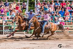Gymkhana Falardeau21444 (Glenn Fullum) Tags: horse nikon barrels sigma full frame chevaux baril gymkhana 70200f28 d610 sigma70200 falardeau