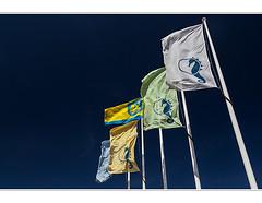 Seepferdchen (geka_photo) Tags: deutschland himmel blau timmendorf schleswigholstein fahnen seepferdchen timmendorferstrand gekaphoto