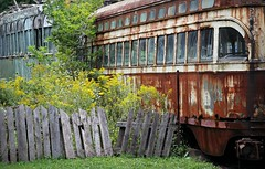 Streetcar Relics (Doris Burfind) Tags: toronto train rust decay vehicle streetcar redrocket radialrailwaymuseumelectric