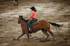 CalgaryPoliceRodeo2015-BarrelRacing-431 (calgarypolicerodeophotos) Tags: horse calgary race bareback sheep barrel police bull racing poker rodeo calf bullriding chute mutton saddle bronc steerwrestling barrelracing saddlebronc cpra chutedogging