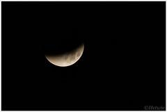 maansverduistering (7D031980) (Hetwie) Tags: moon nature night pond nacht nederland natuur fullmoon vijver noordbrabant eclips maan vollemaan aarlerixtel maansverduistering supermaan bloedmaan aarlesevisvijver