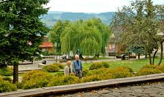 W Landckoronie bywają szcześliwi ludzie (Hejma (+/- 5400 faves and 1,7 milion views)) Tags: square daylight dom smalltown światło miasteczko miejskiurban drewnianywooden housedrzewatreeskrzewybushesosobypersonaepolskapolandrynek landckorona