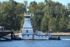 Tidewater Barge Lines MAVERICK (Chuck Stephens) Tags: tugboat tug tugs willametteriver tugboats maverick kellypointpark workboats kpp tidewaterbargelines pacificnorthwesttugs wdc5837 367047170