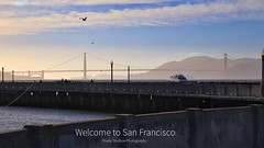 Welcome to San Francisco (SkyBlue Photography Pro) Tags: ocean bridge blue sky bird canon landscape photography golden evening bay twilight gate san francisco cityscape view harbour seagull magic hour area stunning lantern