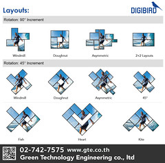 Video Wall Digibird