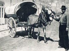 portugal 1954 algarve carro de burro (Roger S 09) Tags: portugal 1954 burro carro algarve garryhogg