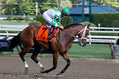 20150801_SaratogaRC_0203.jpg (cct77gjj) Tags: newyork saratoga saratogasprings thoroughbredhorseracing saratogaracecourse iradortizjr 2015breederscuppreentry favoritetale
