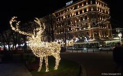Decorative Lights (Kuvasta Kuvaan) Tags: christmas winter night finland lights helsinki samsung esplanade decorativelights