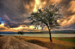 Two on the shore (* landscape photographer *) Tags: road sunset italy lake tree nature colors alberi lago nikon europe flickr tramonto valle natura sa sasi colori strade paesaggio salvo lucania 2015 landscapephotographer sinni salvyitaly seniselagodimontecotugno