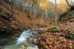 L'autunno scorre in valle San Pietro (EmozionInUnClick - l'Avventuriero's photos) Tags: autunno cascata montecucco vallesanpietro