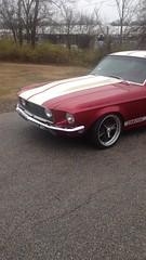 "1968 Mustang • <a style=""font-size:0.8em;"" href=""http://www.flickr.com/photos/85572005@N00/23654980605/"" target=""_blank"">View on Flickr</a>"