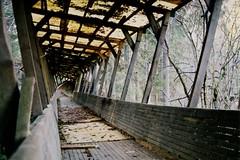 weeeeeeeeeeeeeeeeeeee (Telefontubbie) Tags: pamestatrase abandonedplace autumn rudens