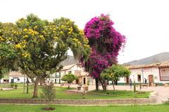 """Jardín en en la plaza de Nobsa • <a style=""""font-size:0.8em;"""" href=""""http://www.flickr.com/photos/78328875@N05/23793316475/"""" target=""""_blank"""">View on Flickr</a>"""
