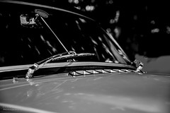 North West Vintage Rally (Ollie Smith Photography) Tags: vintage rally northwest halton cheshire widnes nikon d7200 lightroom sigma1750 car classiccars monochrome blackwhite mg britishsportscar