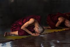 _MG_4823-le-17_04_2016_wat-thail-wattanaram-maesot-thailande-christophe-cochez (christophe cochez) Tags: burmes burma birmanie birman myanmar thailand thailande maesot myawadyy monk bonze novice religion watthailwattanaram travel voyage bouddhisme buddhism portrait