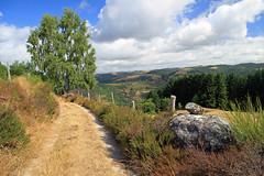 Sur le chemin d'Espeyrac (Yvan LEMEUR) Tags: espeyrac aveyron france chemin randonne clture arbre extrieur rodez truyre lot paysage landscape surlechemin