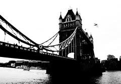 Pass over (darioseventy) Tags: london londoncity uk greatbritain londra unitedkingdom londonbridge ponte regnounito granbretagna bn biancoenero bnw bw blackanwhite