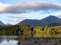 sunlit trees (Sandra Roche) Tags: derwentwater autumn trees lake