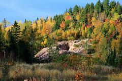 Fall Colors (Cindy's Here) Tags: fallcolors leaves trees mine billsoldamethystmine pearl ontario canada canon 1365 takeaim explore