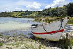 Canoa Abandonada (Tato Avila) Tags: colombia colores clido cielos montaas mundos arboles agua laguna lagunadetota boyac