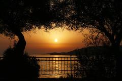 P1070350b - Framed sunset (JB Fotofan) Tags: sun sunset sonne sonnenuntergang meer sea baum trees trkei trkiye turkey orange sky himmel zdere