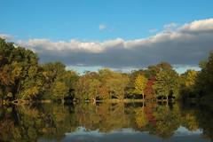 Reflets d'automne. (jpto_55) Tags: reflet arbres automne paysage lac etang xe1 fuji fujifilm xf 1855mm france hautegaronne