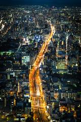 80million Pixel  Osaka Harukas () Tags: olympus penf  osaka  japan  kansai panasonic dg 425mm f12