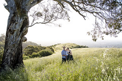 Picture Perfect Location for Photo Shoot (Caramel Kisses Photography) Tags: photoshoot spring adelaidehills adelaide photographer hills view sunset light blow gumtree tree grass tallgrass canon family warm